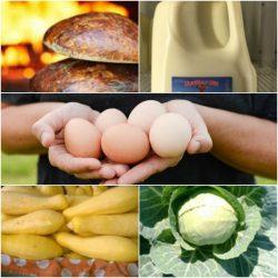 OVFC Essentials Basket Collage