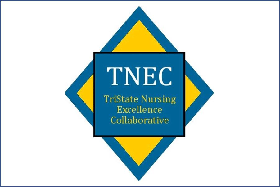 TNEC cover image